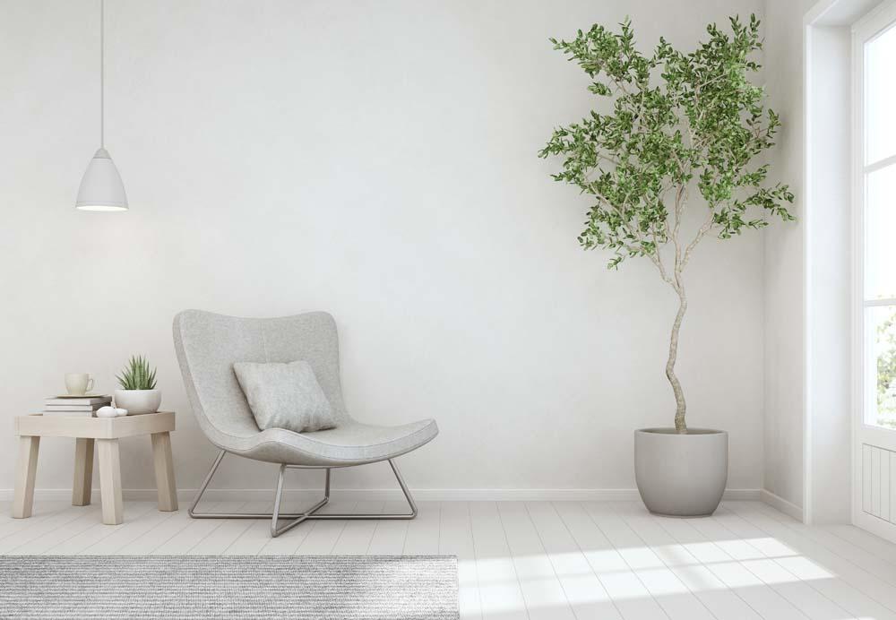 5 ข้อดีของการใช้ต้นไม้เป็นองค์ประกอบภาพ