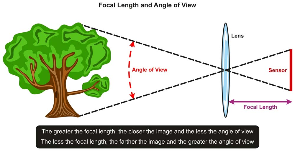 เรื่องพื้นฐานที่ต้องรู้เกี่ยวกับระยะของเลนส์ มือใหม่ควรรู้ไว้จะได้ถ่ายภาพชัด เลือกซื้อเลนส์ได้ถูกใจ